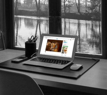 Jak pisać dobrego bloga – przydatne wskazówki